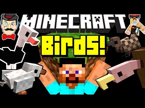 Minecraft BIRDS! Deadly Vultures, Hungry Seagulls, Sparrows & More Mod!