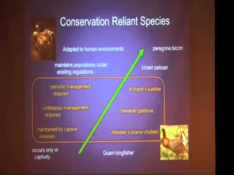 Conservation in a Changing World  Do We Need a New Paradig clip17