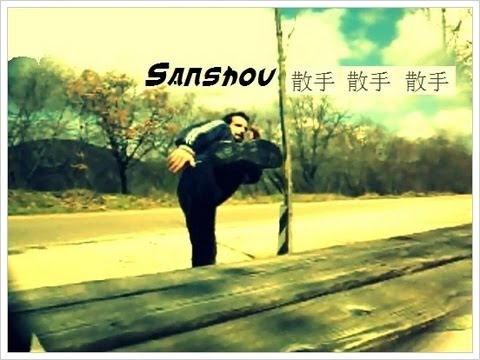 Martial Arts : SIDE KICK Training Sanshou Image 1