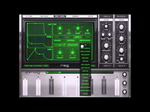 Tutorial: Getting Started in Animoog