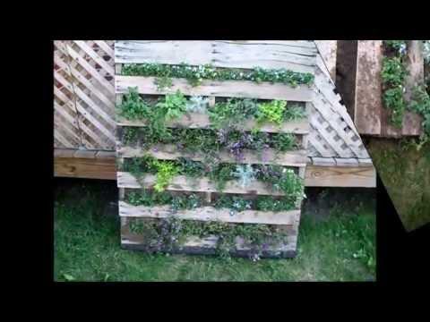 vertical pallet garden video 1