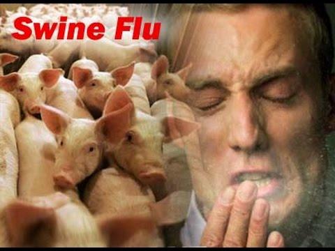 How to prevent Swine Flu (H1N1) Virus