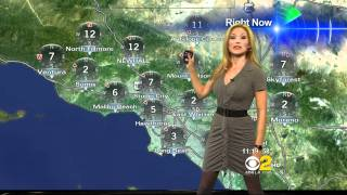 Jackie Johnson 2011/04/13 11PM CBS2 HD; Tight gray dress, cleavage
