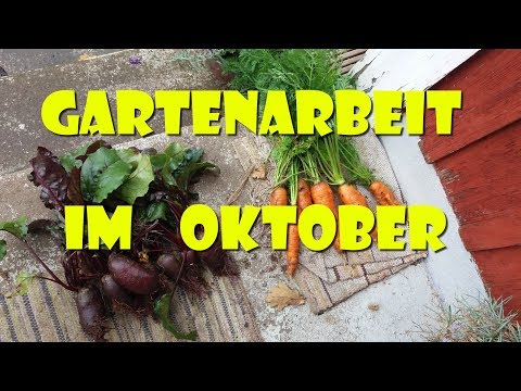 Gartenarbeit im Oktober - Rundgang durch den Herbst Garten
