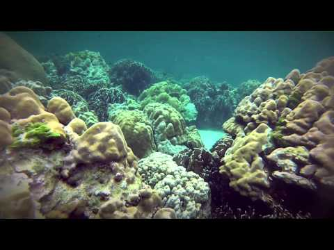 Diving And Snorkeling Koh Lipe, Thailand Gopro Hero3