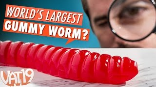 Burning Questions: World's Largest Gummy Worm