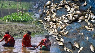 Primitive Technology: Fish Catching In River | Village Boy Catch A Lot Of Fish By Net