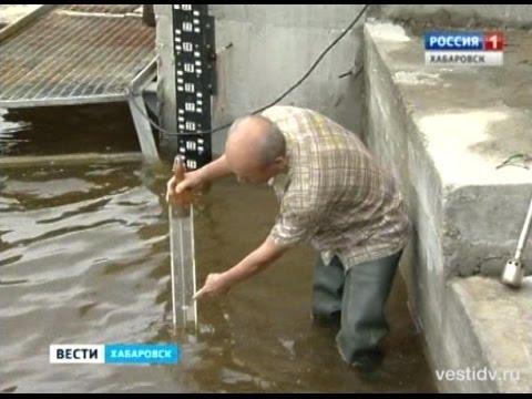 Уровень воды в Амуре у Хабаровска вырастет к августу