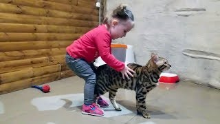 CUTE TODDLER Lile visits CAT's Home For the first time! - FUNNY BABIES and Animals!