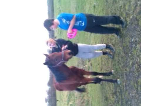 Braking In Our Horse!!! =) Xxx video