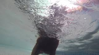 Star learning to dive underwater.
