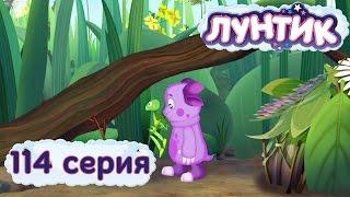 Лунтик и его друзья - 114 серия. Ветка