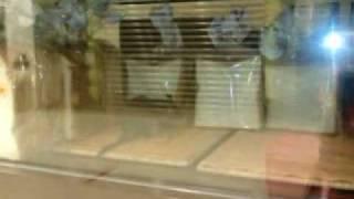 20100530 海港城 Panash 有老鼠!