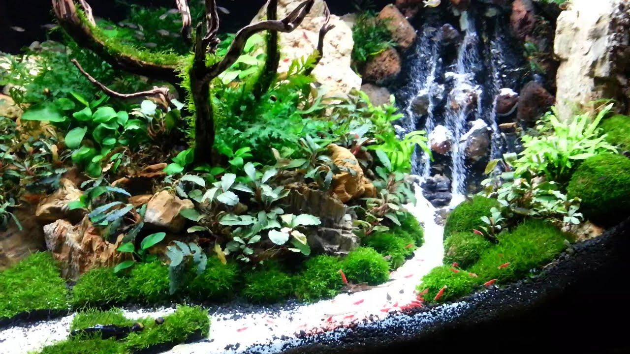 Водопад в аквариуме своими руками - это очень просто! 645