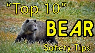 """""""Top 10"""" BEAR Safety Tips (or HOW TO AVOID BEING EATEN ALIVE!)"""