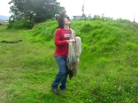 Como lanzar una atarraya grande de 5 metros de diámetro (16 foot cast net)