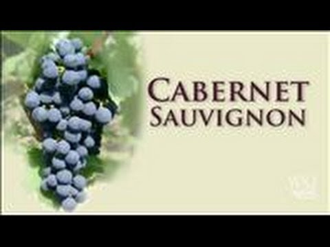 Cabernet Sauvignon: A Prestigious Grape to Grow