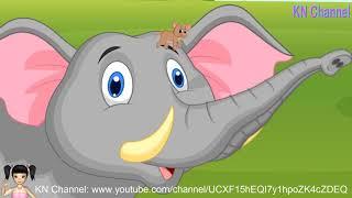 ChiChi ToysReview TV - Trò Chơi chó và mèo trổ tài bắt chuột P4