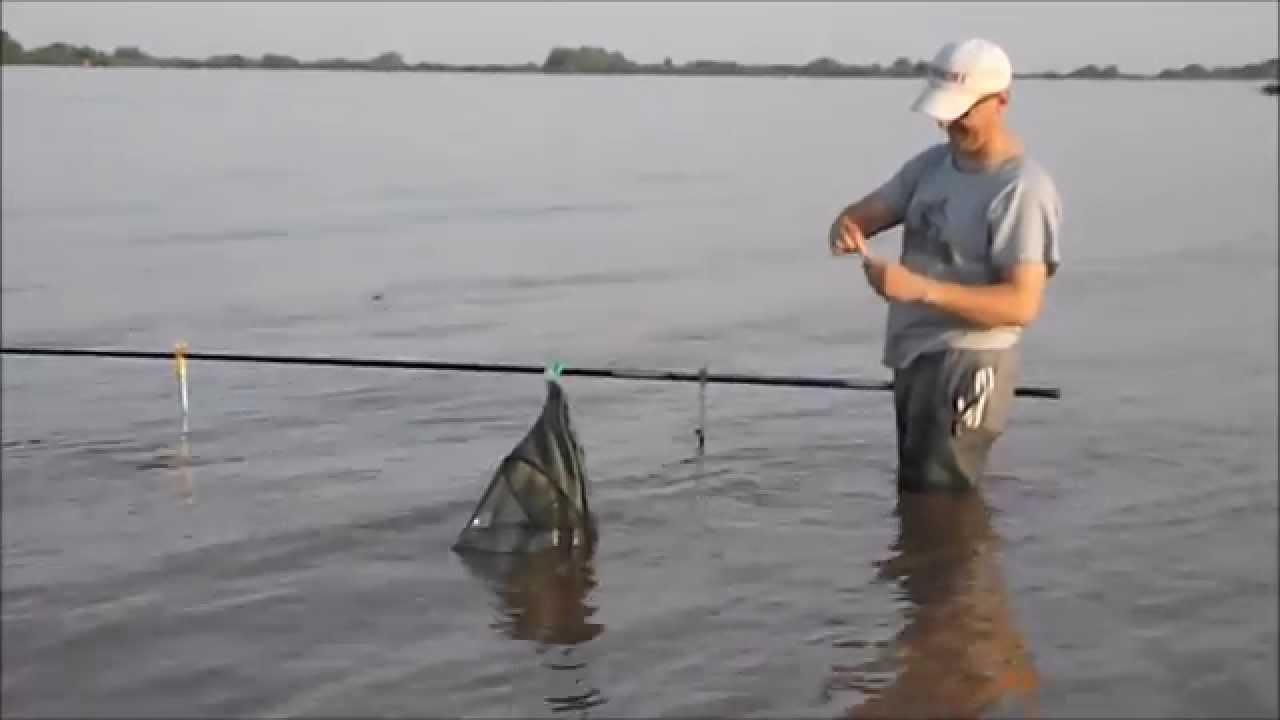 лучшая рыбалка на волхове