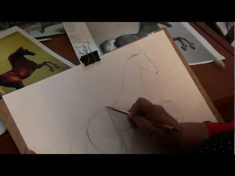 Видео как рисовать лошадь