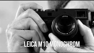 Leica M10 Monochrom First Look: Medium Format Detail & Tonality in a 35mm Body
