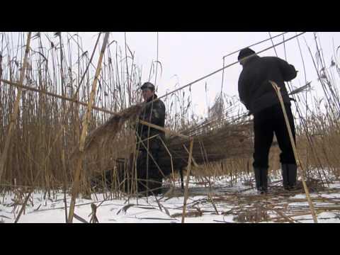 ловля куропатки сетью видео