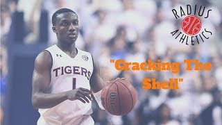 "Auburn Tigers - ""Cracking The Shell"""