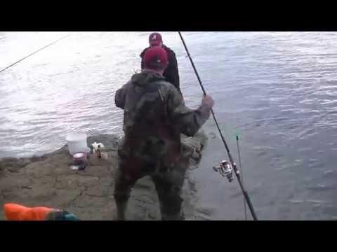 рыбалка на реке или 2016 видео