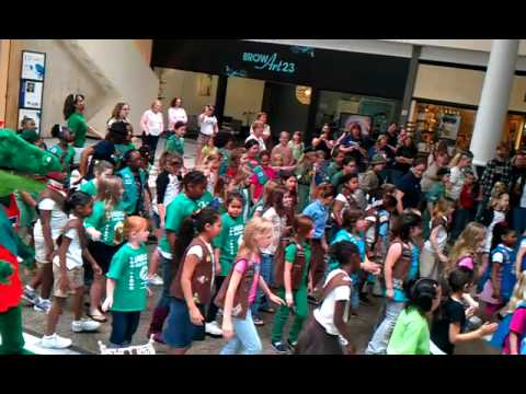 Girl Scouts flash mob Oaks Mall Gainesville FL