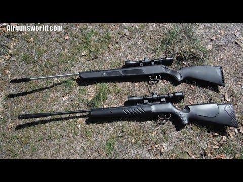 Crosman Nitro Venom vs Beeman Dual Caliber .177 Air Rifle Shootout