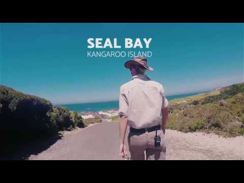 A S'porean in South Australia: Kangaroo Island in under 2 minutes.