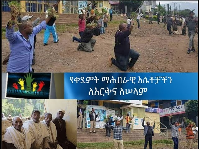 ESAT HR- Interview with Anthropologist Dr. Tadesse Wolde. Nov 2018