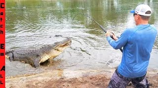 FISHING for BIG GATORS!