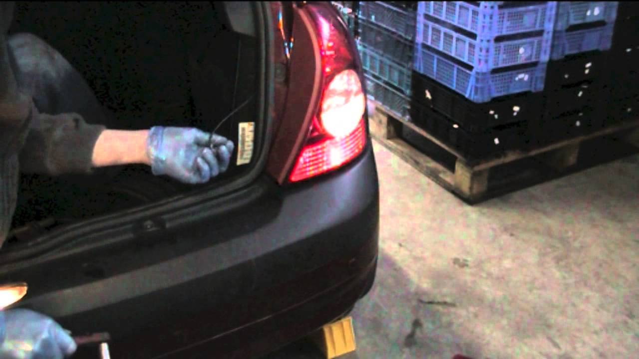 clio reversing light