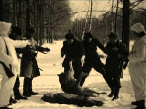Виталий Аксенов - Волчье солнце