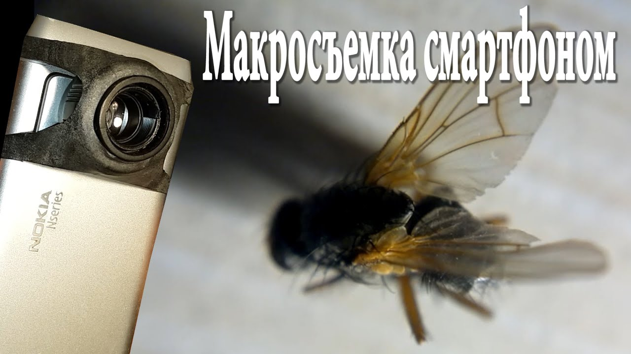 Как сделать макроснимок