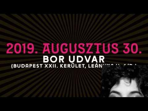 30. Budafoki Pezsgő és Borfesztivál - Swing á la Django & BDZ Big Band