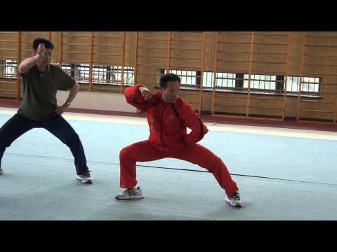 Tai Chi Training Ph.D program in Shanghai Sport University (Jesse Tsao) 3