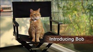 "A Street Cat Named Bob (2016 Film) - Official ""Introducing Bob"" Featurette"
