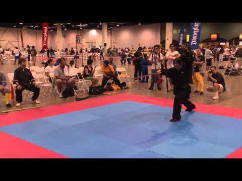 Kung Fu Championship 2011 Adult Grand Champion Image 1