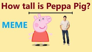 How tall is peppa pig - meme! How tall is Daddy Pig?