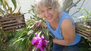 Nancy Goff's 80th Birthday
