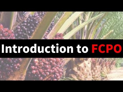 Understanding Futures Crude Palm Oil (FCPO) Market Trends : What's NEXT in 2012