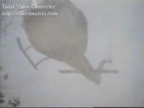 Birdy Trailer