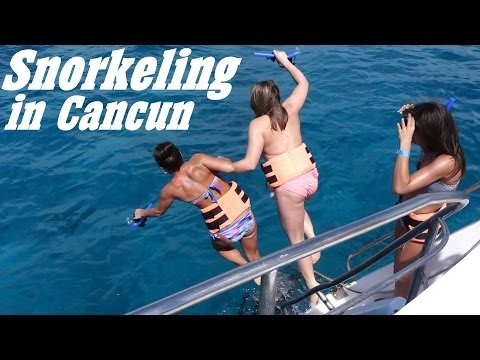 Snorkeling In Cancun Mexico   A Paradise In The Caribbean