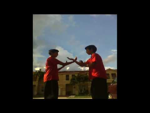 hung gar kung fu-sticky hands technique Image 1