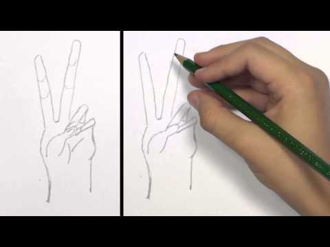 How to Draw a Peace Hand Sign: KidVid | TAT
