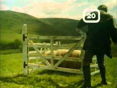 80s advert Carling Black Label sheepdog