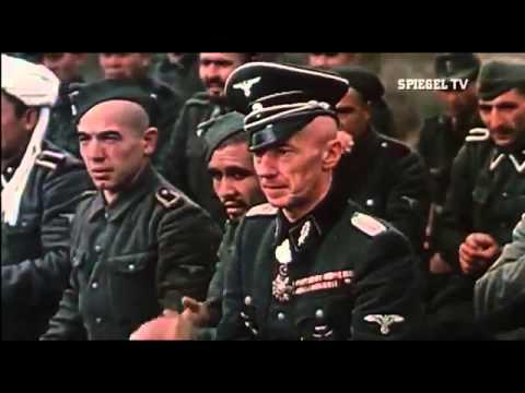 Spiegel tv von krieg zu krieg der nahe osten 2011 for Spiegel tv von gestern