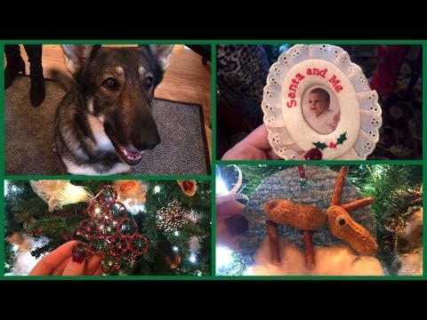 Vlogmas 2013 ❄ Day 17 We have 5 million cats up in this joint...